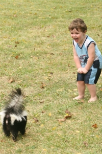 child and skunk