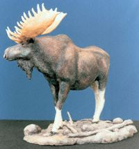 Moose Sculpt 1