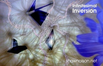 infinitesimal inversion