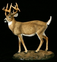whitetail buck sculpture